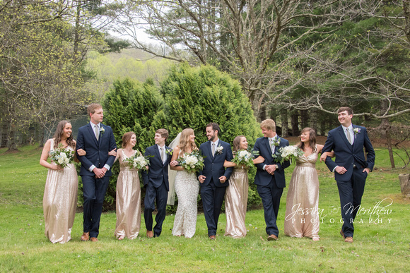 wedding party walking in navy tuxedos and champagne dresses at roan mountain state park