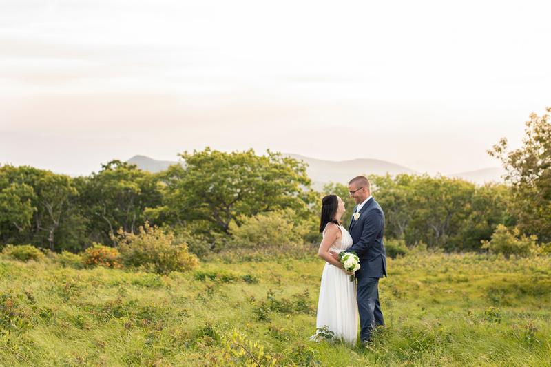 Craggy Gardens wedding photo