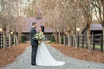 Alpaca barn wedding photo at Hawkesdene in Andrews NC
