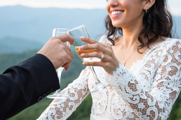 Bride and groom with champagne toast at wedding at Hawkesdene in Andrews near Asheville