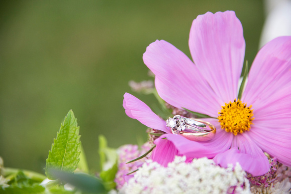 Wedding rings with Carolina Flowers bouquet at Engadine Inn in Asheville