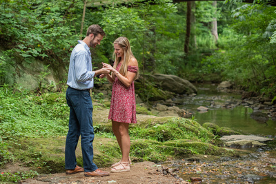 Summer proposal photography at the Asheville Botanical Gardens