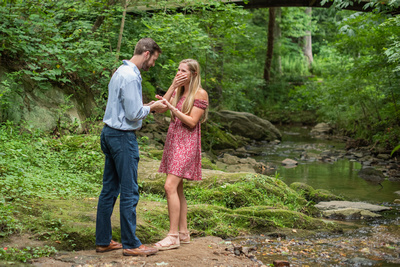 Botanical Gardens in Asheville proposal in the summer