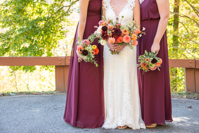 Bride and bridesmaids at wedding in Asheville