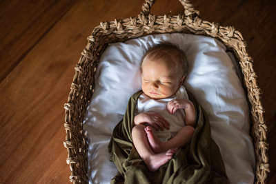 Newborn photography in Biltmore Estate in Asheville NC of baby boy in basket