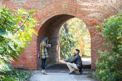 Proposal at brich tunnel at Biltmore Estate in Asheville